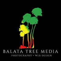 Photography and website design - Balata Tree Media