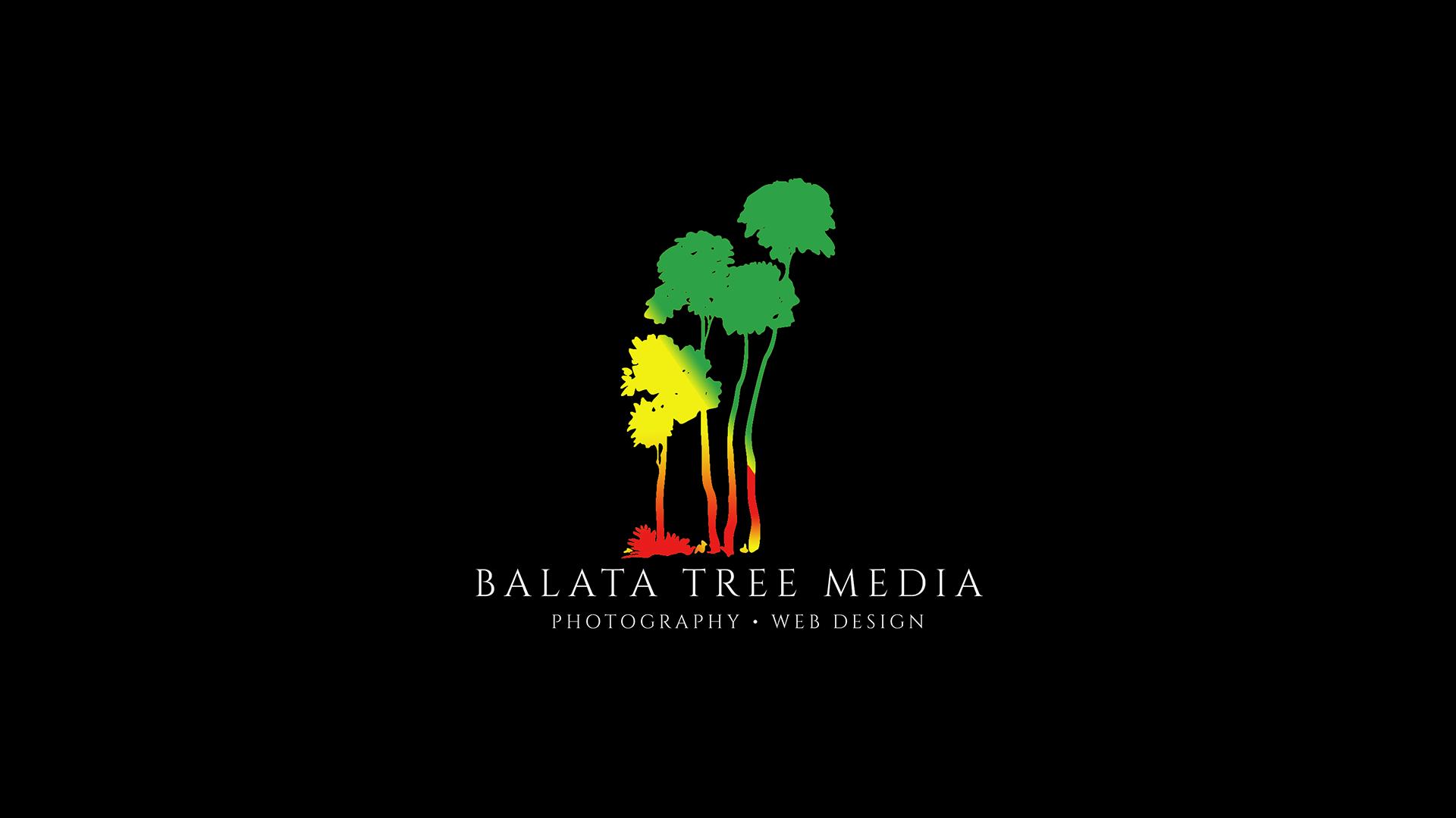 Balata Tree Media